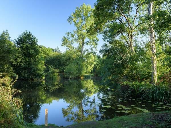 Rives Nature Cottages et Camping en Bretagne