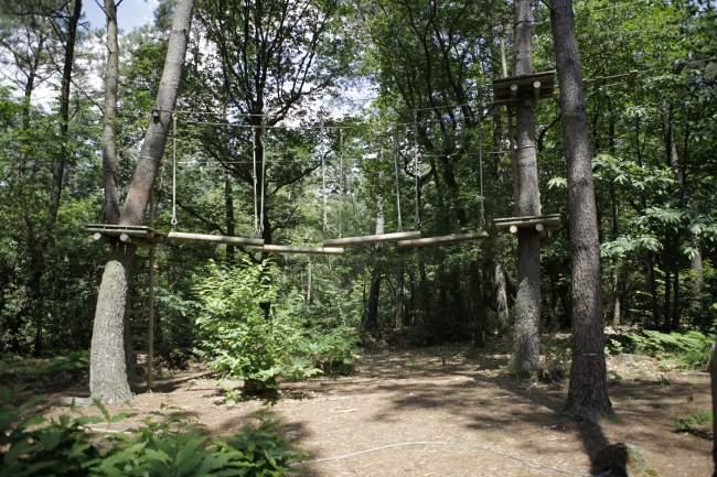 Accro-branche Rives Nature Cottages et Camping en Bretagne