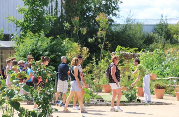 jardin-botanique